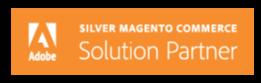 briteskies-magento-solution-partner-logo-lockup[2]-1