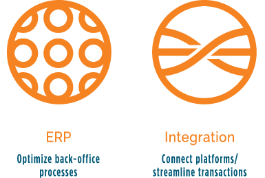 ERP and Integration